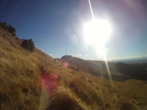 A Rest from the 52 Peaks in the Port Hills