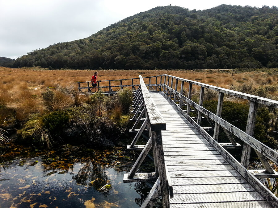 Multiple bridges across the trail towards Gouland Downs Hut.
