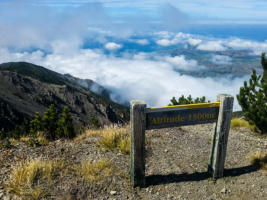 Getting there… only 100m of climbing to go.  Kaikoura in the distance below us.